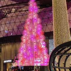ION Orchard Mall | POPULAR Trips, Photos, Ratings & Practical Information