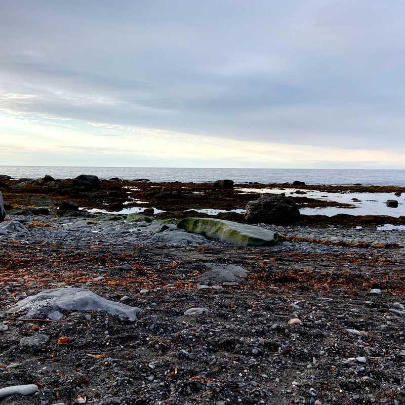 Auberge Festive Sea Shack