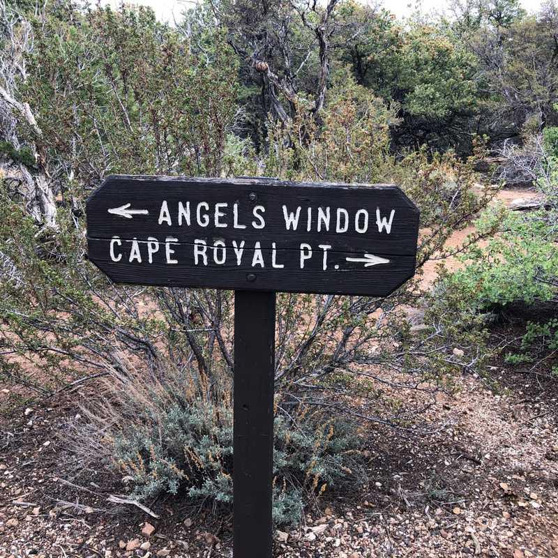 Angels Window