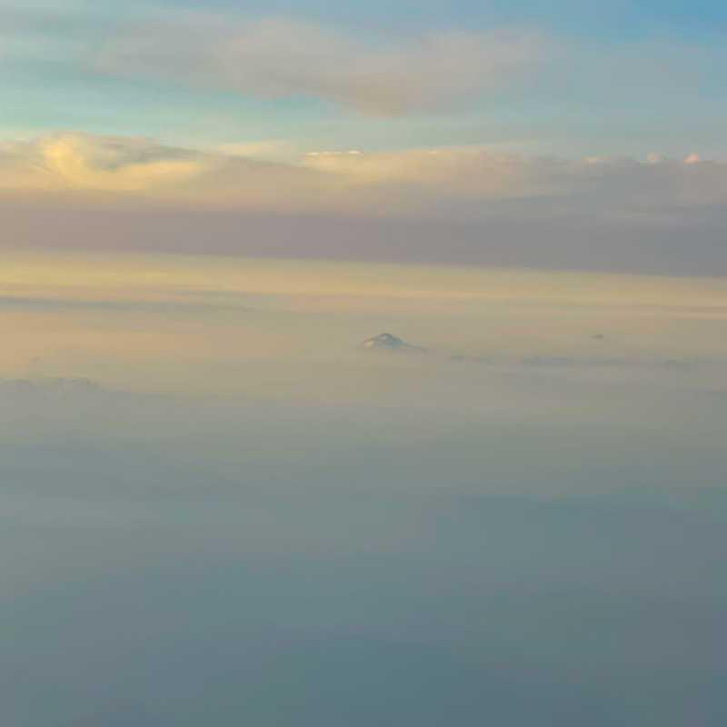 Seattle-Tacoma International Airport (SEA)