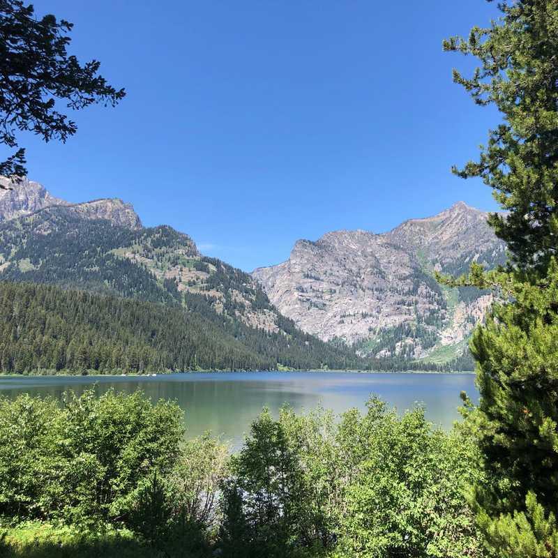 Phelps Lake Loop Trail