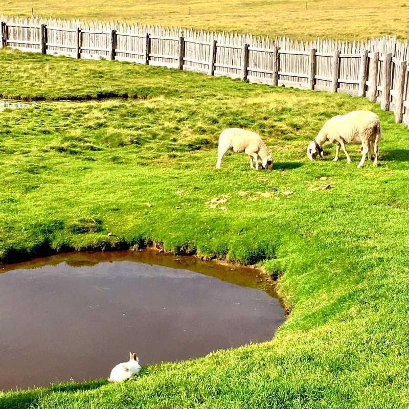 Munt de Fornella - Passo delle Erbe