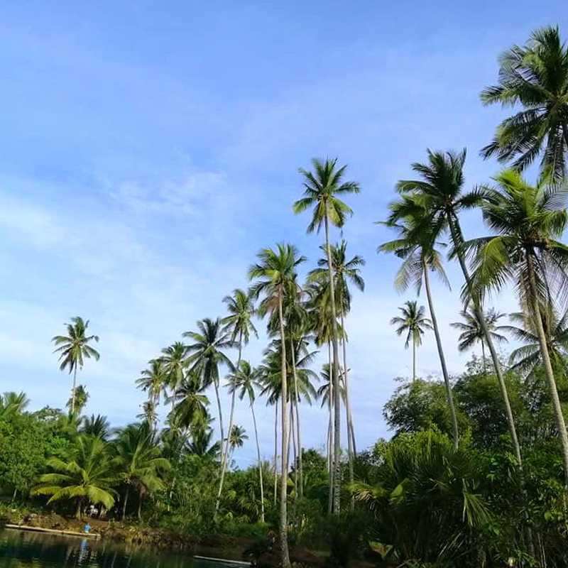 Trip Blog Post by @Kylie: [3 DAYS] Davao City & Davao Oriental, Philippines | 3 days in Sep (itinerary, map & gallery)