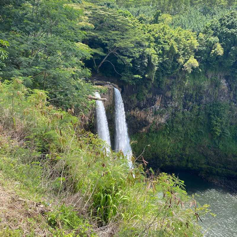 Trip Blog Post by @froggytlc: From San Jose to Kauai and back June-2021 Days 6-10 | 5 days in Jun (itinerary, map & gallery)