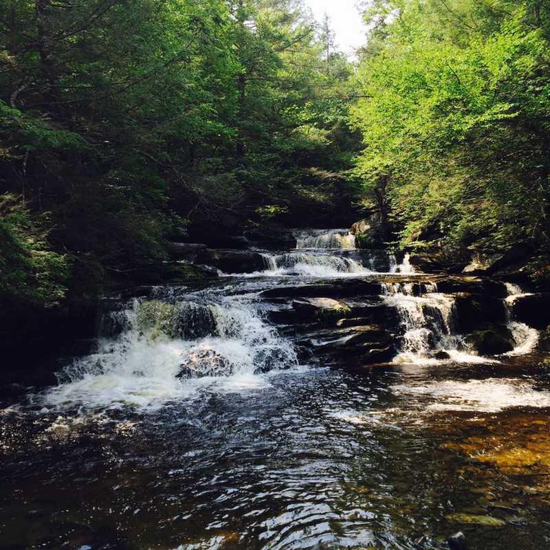 Hike Vernooy Kill Falls Trail