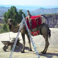 Cappadocia   POPULAR Trips, Photos, Ratings & Practical Information