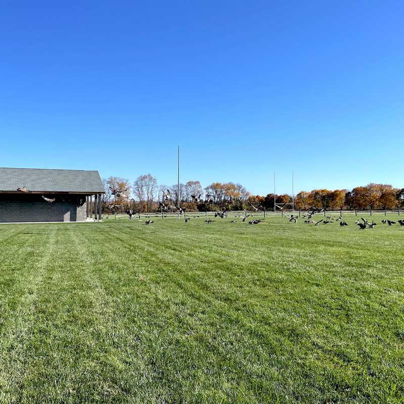 West Windsor Fields