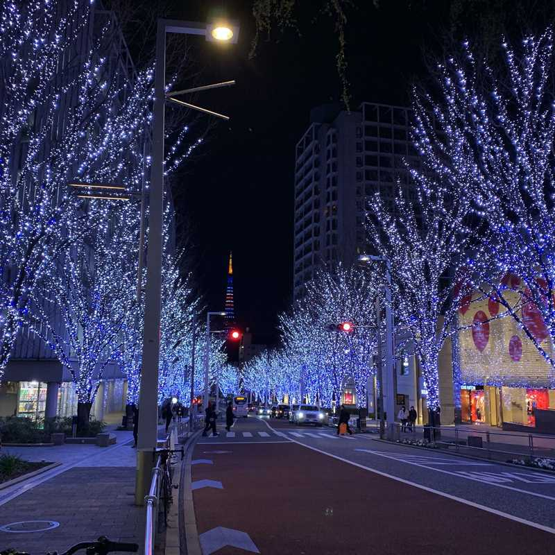 Trip Blog Post by @hanna: tokyo 2020 | 1 day in Jan (itinerary, map & gallery)