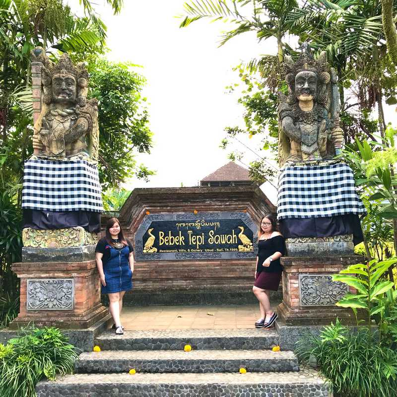 Bebek Tepi Sawah Villas and Spa