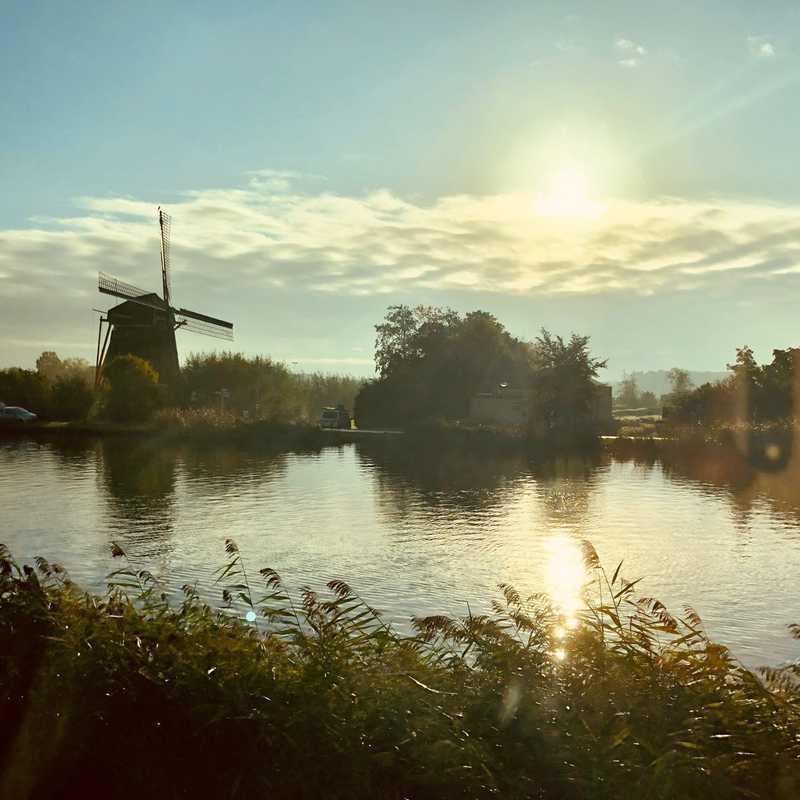 Rembrandt Windmill