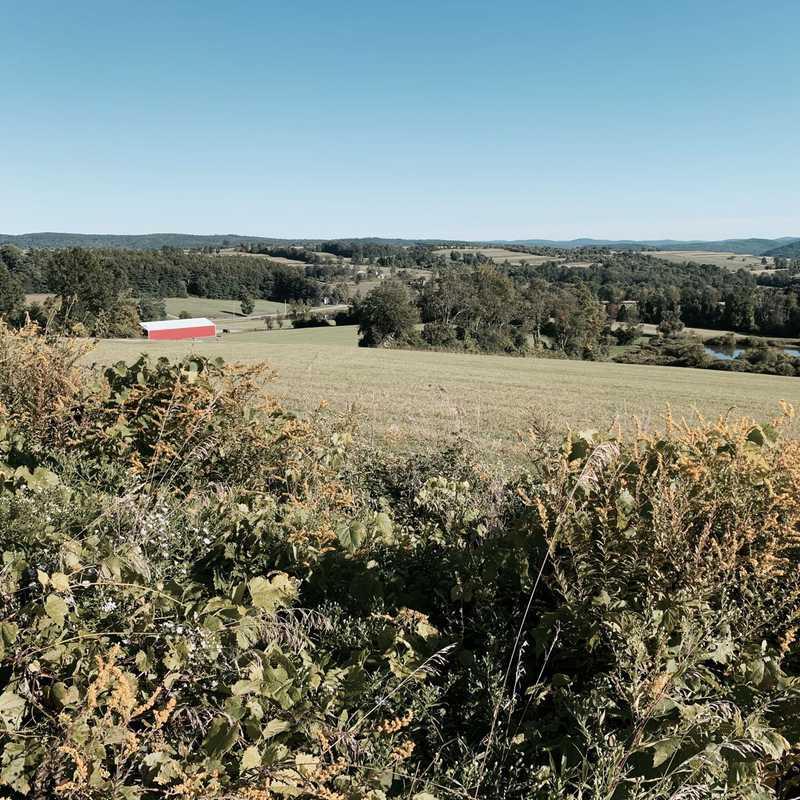 Wethersfield Estate