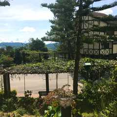 Copthorne Hotel Cameron Highlands   Travel Photos, Ratings & Other Practical Information