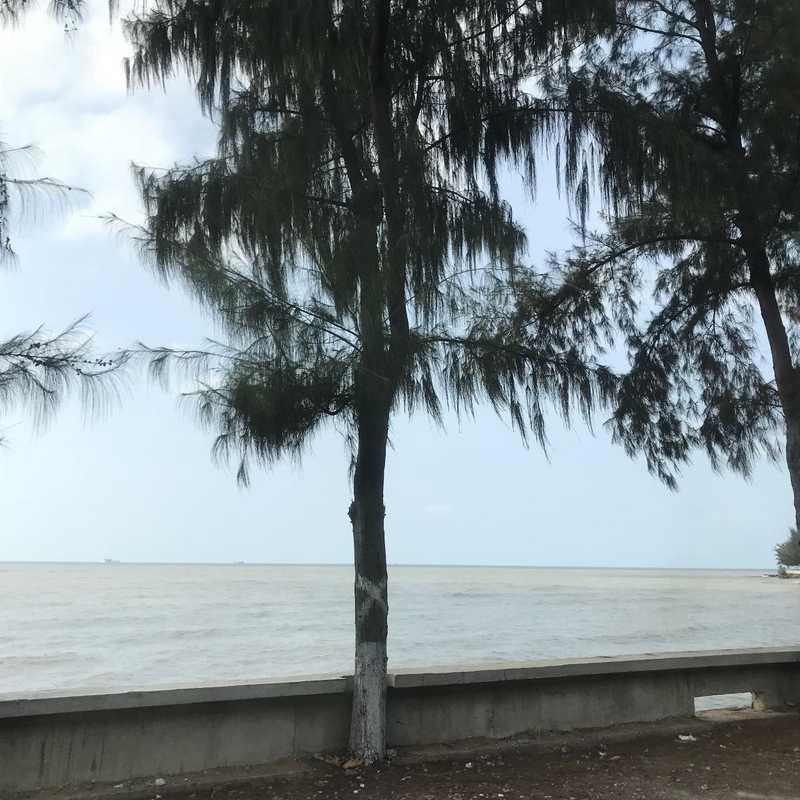 Phú Mỹ