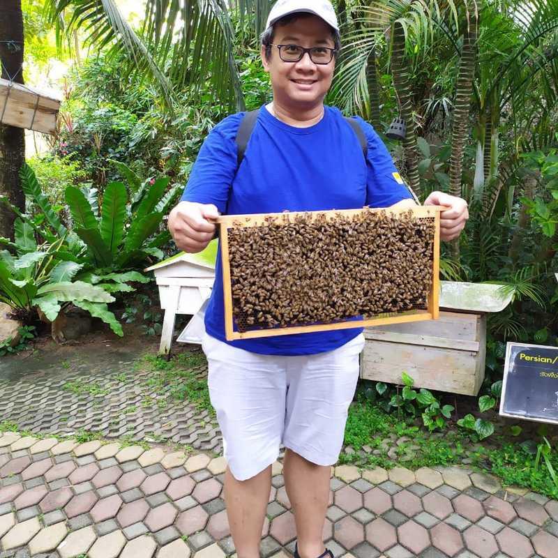 Big Bee Farm (Pattaya)