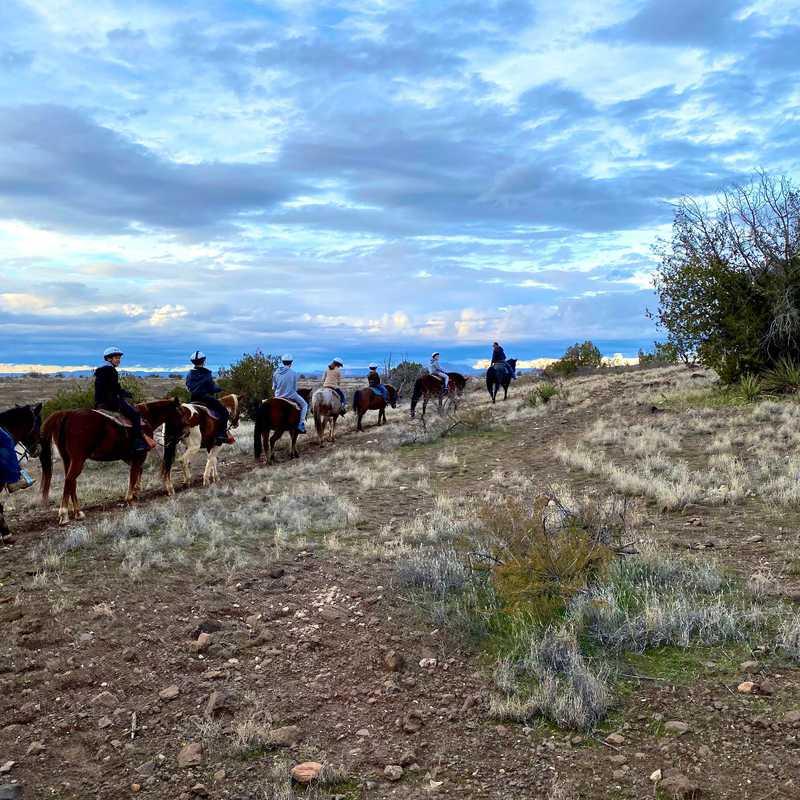Sedona Horseback Rides - M Diamond Ranch