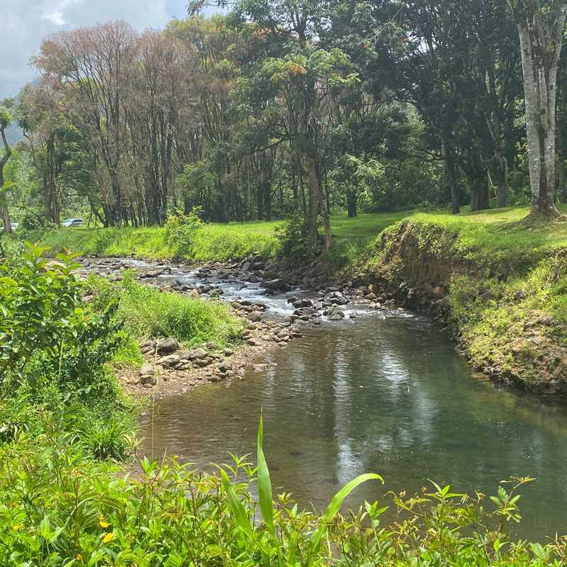 Keahua Arboretum