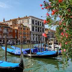 Venice Top Attractions for First-Time Visitors
