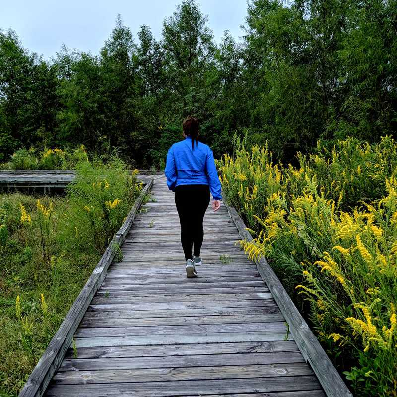 Bayou Sauvage NWR Ridge Trail & Boardwalk