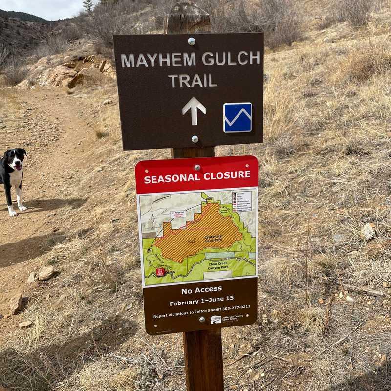 Mayhem Gulch Trail