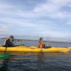 Kaikoura Kayaks   POPULAR Trips, Photos, Ratings & Practical Information