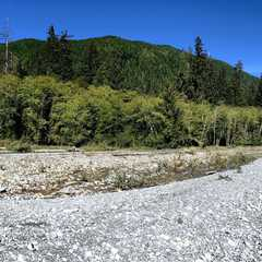 Hoh River Trail | POPULAR Trips, Photos, Ratings & Practical Information