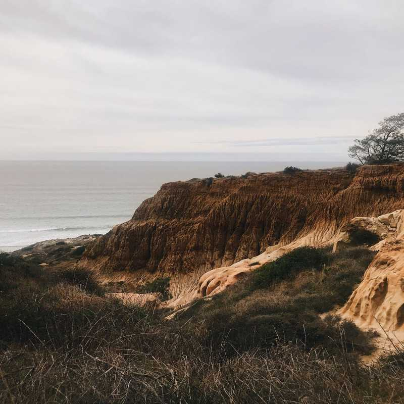 Place / Tourist Attraction: Torrey Pines State Reserve (San Diego County, United States)