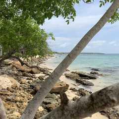 Playa Blanca   Travel Photos, Ratings & Other Practical Information