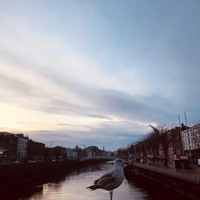 O'Connell Bridge