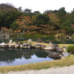 Tenryu-ji Temple / 天龍寺 | POPULAR Trips, Photos, Ratings & Practical Information