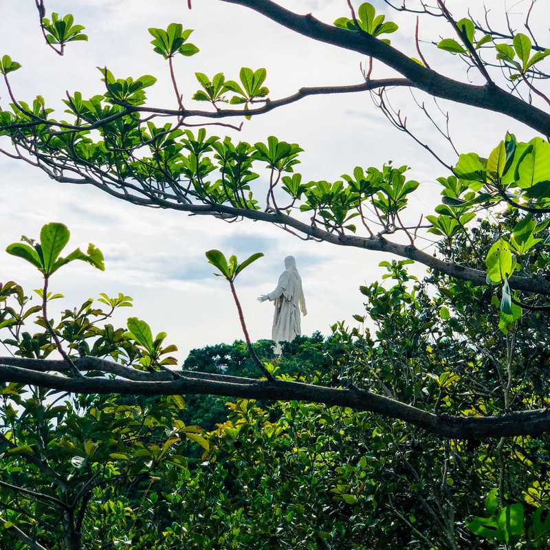 Christ the Savior (Pilgrimage Island)