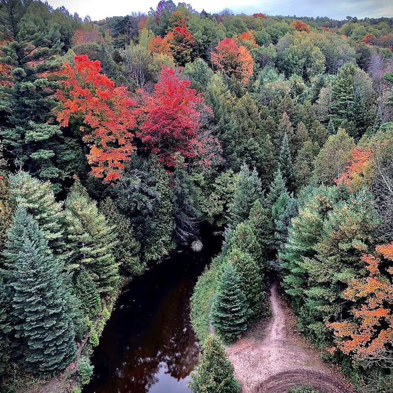 Simcoe County Admin Forest