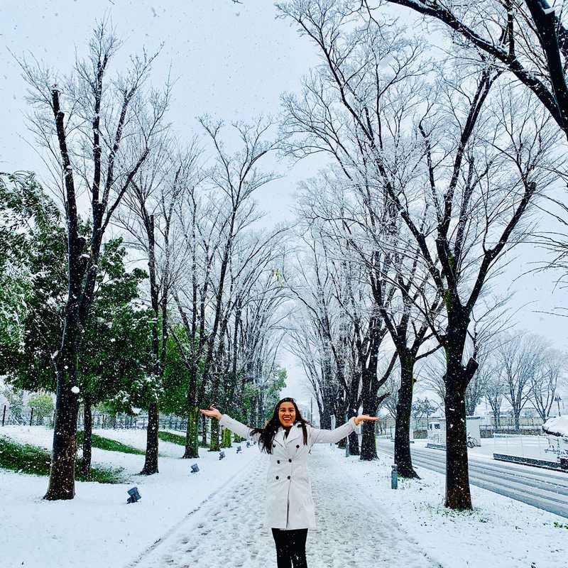 Sakura ❤️ Snow