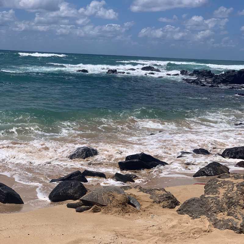 Waiāhole Beach Park