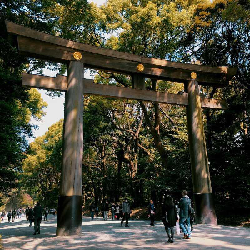 Place / Tourist Attraction: Meiji Jingu (Shibuya, Japan)
