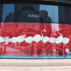 Chuo (Tokyo, Japan) | Seleted Trip Photo