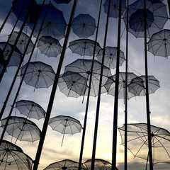 Umbrella Branding