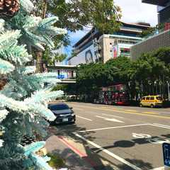 Taipei - Photos by Real Travelers, Ratings, and Other Practical Information