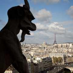 Notre Dame Cathedral / Cathédrale Notre-Dame de Paris