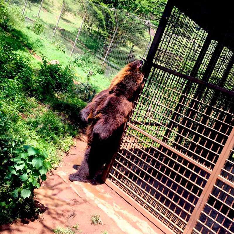 Ol Jogi Wildlife Conservancy