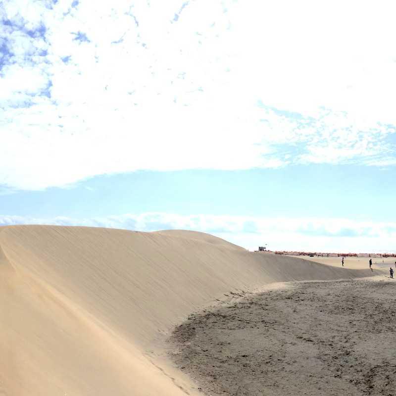 Kiosco Beach N°7