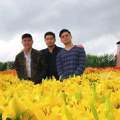 Zhongshe flower market taichung