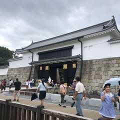 Nijō Castle / 二条城