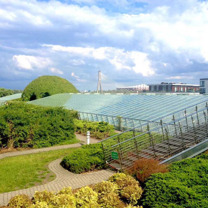 Plant dome