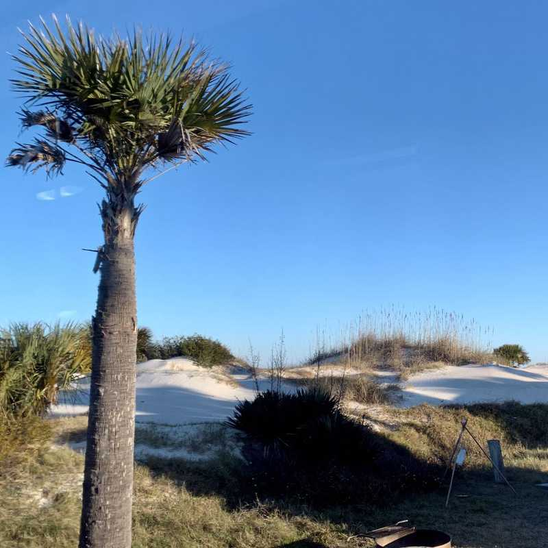 Fort Clinch State Park East Beach Access