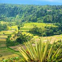 Karangasem Regency - Selected Hoptale Photos
