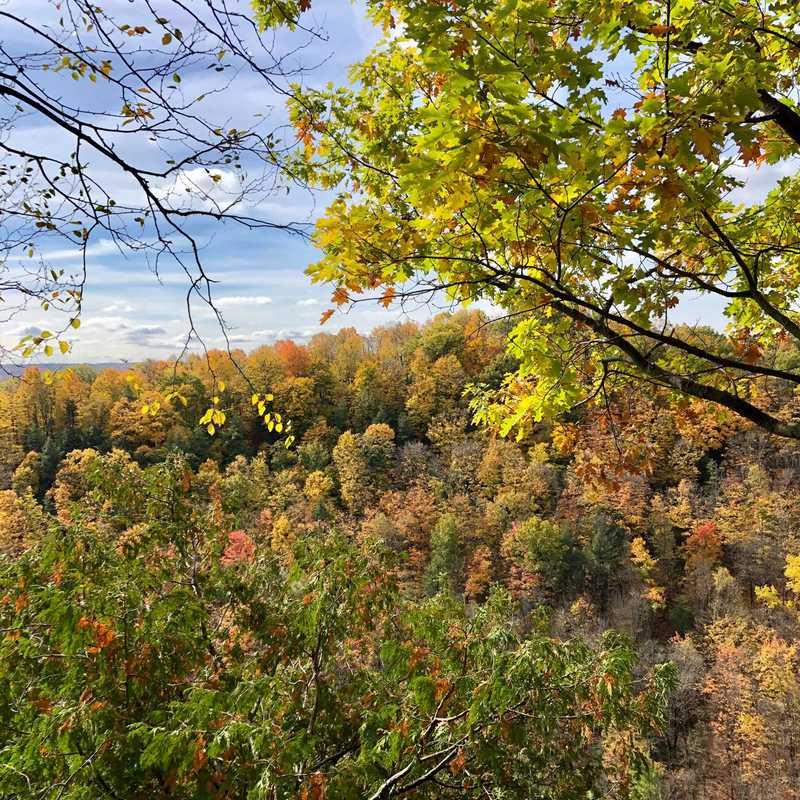 Spencer Gorge Wilderness Area