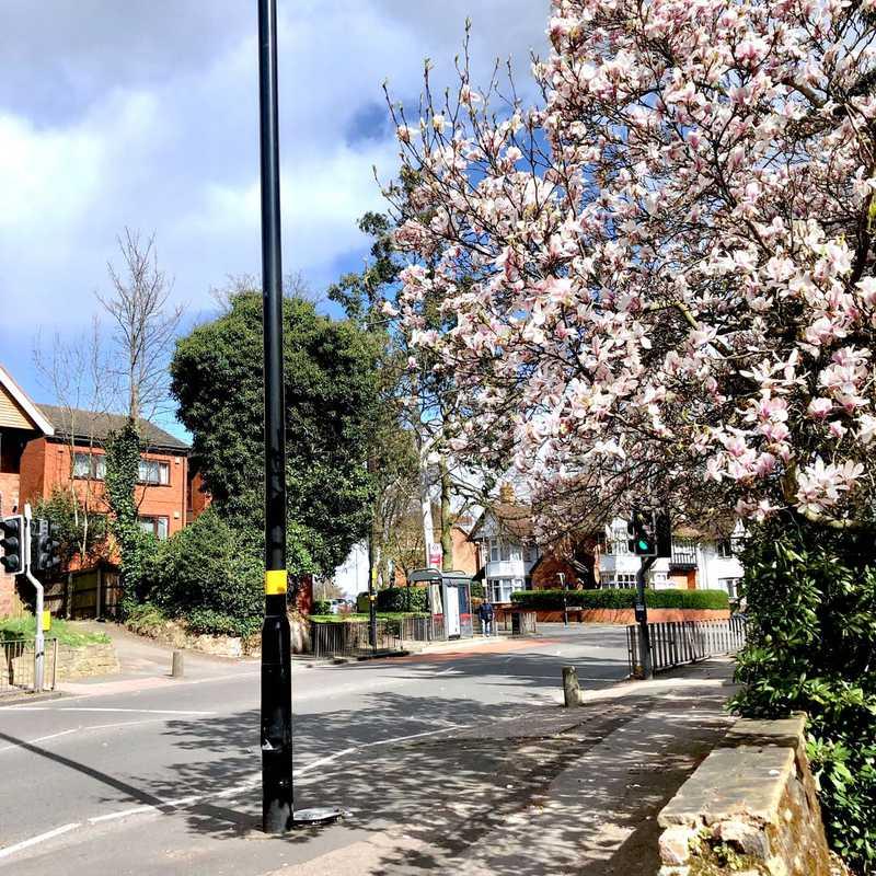Oxford road area