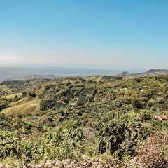 Alajuela Province - Selected Hoptale Photos