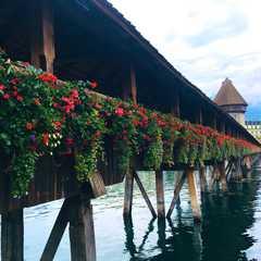 Kapellbrücke | POPULAR Trips, Photos, Ratings & Practical Information
