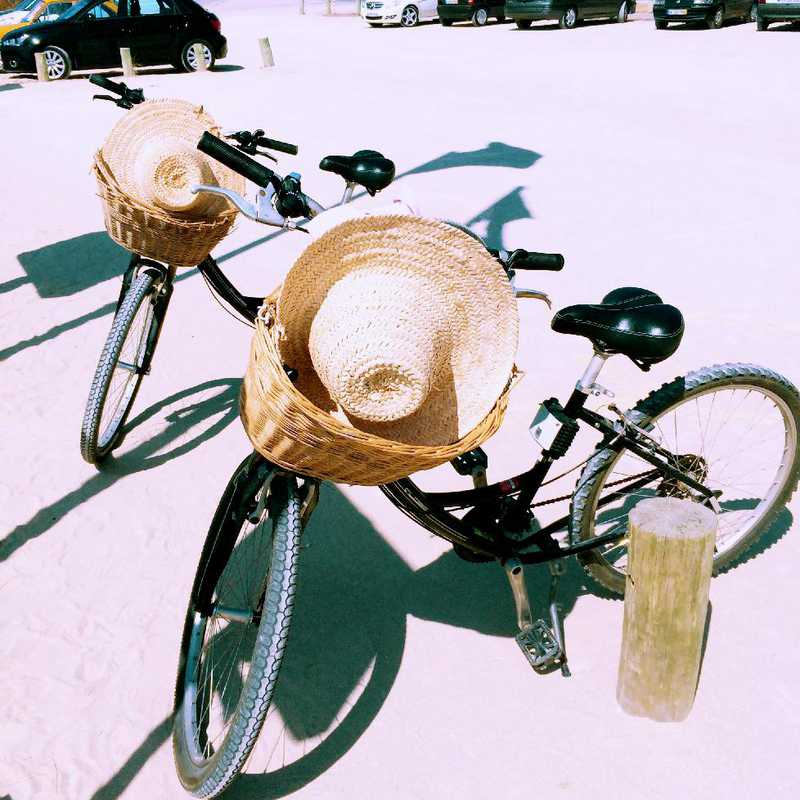 Scenic Bike Ride from Hotel